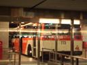 IMGP2935